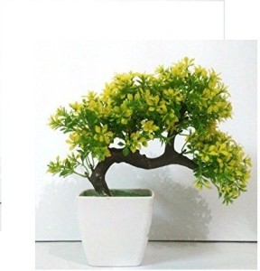 //encrypted-tbn0.gstatic.com/images?q\u003dtbnANd9GcRWqwQ3pVVlVeY8oVKC36TYm1CzikJdvUgtt3G6OEHm0AhlxyNHMQ & Green Plant indoor ARTF005 Bonsai Wild Artificial Plant with Pot9 cm Green