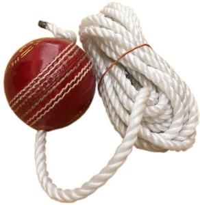 Tima 1063wgty Cricket Tennis Ball -   Size: standard