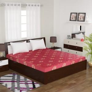 Flipkart Perfect Homes Tysche Therapedic 4 inch Queen Coir Mattress