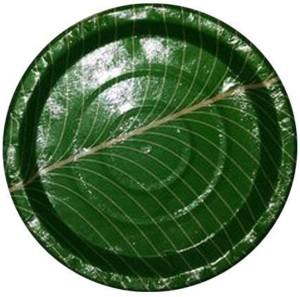 Hug Me Disposable Green Color Design Plate Set Plate Set