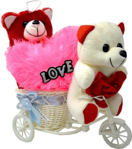ME&YOU Romantic Gifts, Surprise Cycle Teddy for Wife, Girlfriend, fiance On Valentine's Day, Birthday, Anniversary, Karwa Chauth and any special Occasion IZ18TWRCyPH-002  - 16 cm