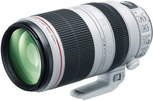 Canon EF 100-400mm L IS II USM f/4.5 - 5.6  Lens