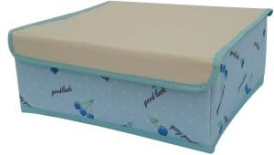 EtsiBitsi Lingerie Storage Case
