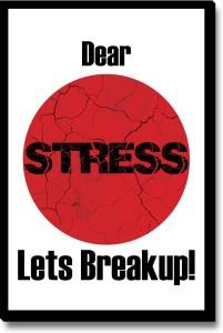 Seven Rays Dear Stress Lets Break Up Fridge Magnet