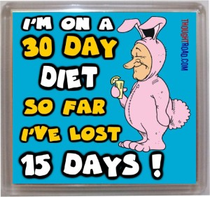 Thoughtroad 30 Day Diet Fridge Magnet