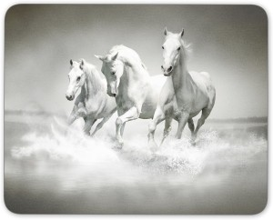 Digiclan Group Of White Horse Mousepad
