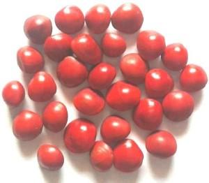 Seedbazaar (Red Sandalwood Plant) Rakta Chandan / Adenanthera pavonina (Red  Bead Tree) Seed10 per packet