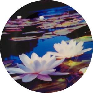 fabulloso Leaf Designs White Lotus Quarter Plate