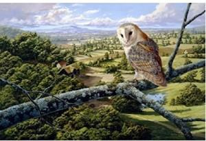 Wentworth Barn Owl Wooden Stephen Cummins Jigsaw Puzzle500 Pieces
