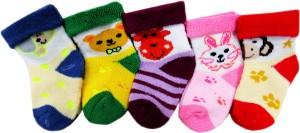 e09390c8db0d Rc Royal Class Baby Boys Quarter Length Socks Best Price in India ...