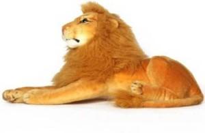 SS MART Large Lion Soft Toy 65  - 70 cm