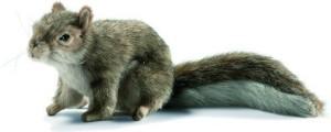 Hansa Sitting Gray Squirrel 9