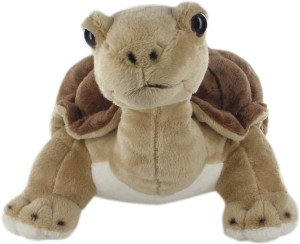 Hamleys Land Turtle Soft Toy  - 9.8 inch