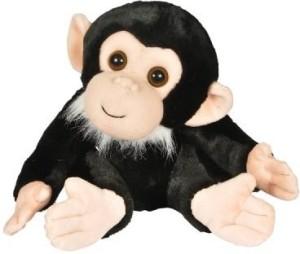 Adventure Planet 12Inch Zoo Crew Monkey Animal