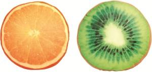 Skylofts Stuffed Soft Kiwi & Orange Fruit Cushions & Pillows  - 35 cm