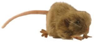 Hansa Brown Mouse 472