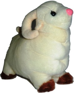 Cuddles Lovely Looking Sheep  - 24 cm