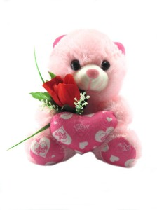 Tickles Teddy With Rose and Heart  - 18 cm