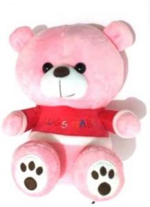Jaibros Cute Pink Baby Bear Teddy  - 22 cm