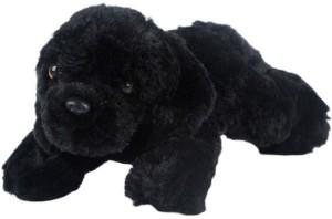 ToynJoy Small Lying Black Dog Puppy Cute Soft & Plush toy as Special Gift  - 30 cm