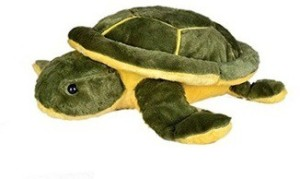 Aayushi Toys Cute Stuffed Tortoise Toy for Kids  - 29 cm