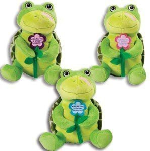 K&G Adorable Speedy Recovery Plush Turtle Get Well Soon Gift