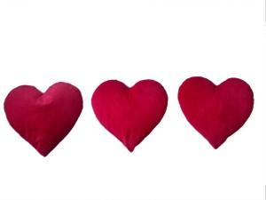 Play N Pets Heart  - 40 cm