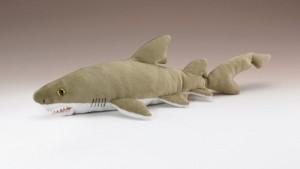Wildlife Artists Sand Tiger Shark 12
