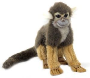 Hansa Squirrel Monkey 8