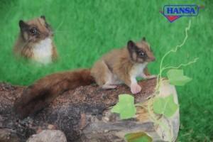 Hansa Leadbetter Possum Plush 4