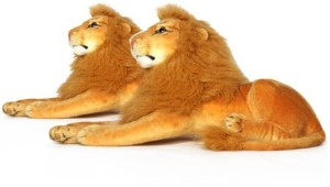 S S Mart Brown Combo of 2 Lion Soft Toys  - 30 cm