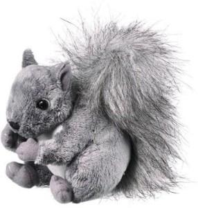 Wild Life Artist Squirrel 6