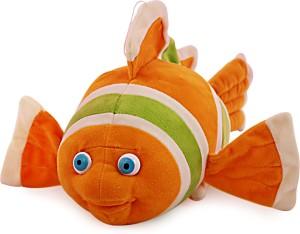 Natkhat Clown Fish  - 30 cm