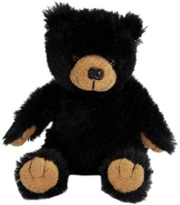 PurrFection Purrfection Tender Friend Black Bear Sitting 6