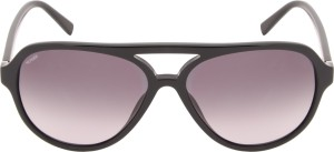 1660e38fc70e Tommy Hilfiger TH 7952 C1 59 S Aviator Sunglasses Brown Best Price ...