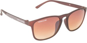 2ba084810f Danny Daze D 1708 C3 Wayfarer Sunglasses Brown Best Price in India ...