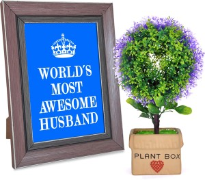 Tiedribbons Valentine Day Romantic Gifts for Husband Plant box with a bonsai and Love Quotation Frame