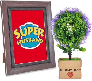 Tiedribbons Valentine Special Romantic Gifts for Him Plant box with a bonsai and Love Quotation Frame