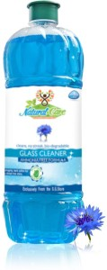 Natural Care GC55A Liquid Vehicle Glass Cleaner