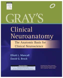 Gray's Clinical Neuroanatomy : The Anatomic Basis for Clinical Neuroscience 1st Edition