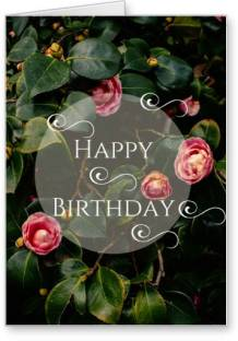 Archies greeting card price in india buy archies greeting card lolprint happy birthday greeting card m4hsunfo