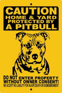 fc9ec360811d2 american pitbull dog poster Paper Print - Animals posters in India ...