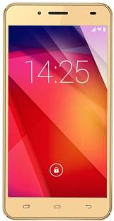 Ziox Astra Young Pro (Gold, 8 GB)