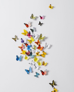 3D Butterfly Stickers Small