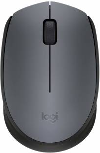 Logitech M-171 Wireless Optical Mouse
