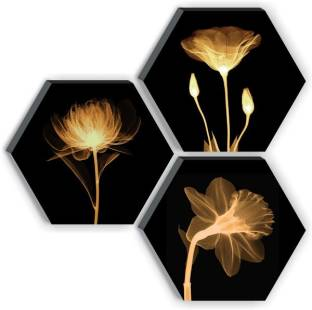 1 Art Of Creations Set of 3 Hexagon Preety Brown Flower UV Textured High quality MDF Home Decorative Gift item Digital Reprint 17 inch x 17 inch Painting
