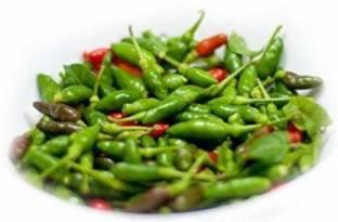 50 Rare Indian White Bird Eye Chilli Kanthari Mulaku Hot Chili Pepper organic