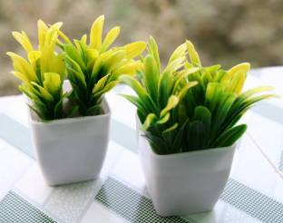 Nimkar's Set of 2 Cute Artificial Plants Bonsai Potted Plastic Faux Grass Fake Topiaries Shrubs for Home, Garden and Office Decor Bonsai Wild Artificial Plant  with Pot