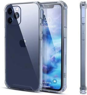 EXOTIC FLOURISH Back Cover for Apple Iphone 12 Mini