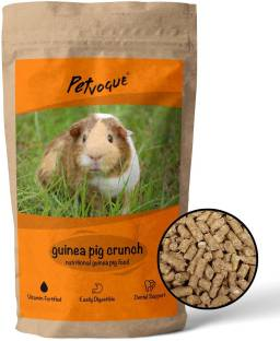 PetVogue Guinea Pig Premium Food (ISO 9001 Certified) (Pack-900gm) 0.9 kg Dry Adult, Young, Senior Gui...